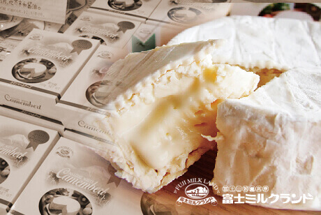 Camembert Cheese
