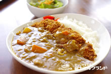 Pork Fillet Cutlet Curry