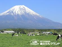 富士牛奶乐园